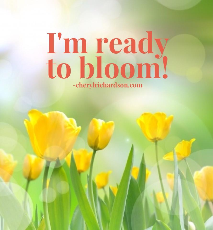 i'm ready to bloom